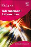 International Labour Law by Barbara Fick