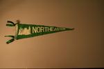 Northeastern State University